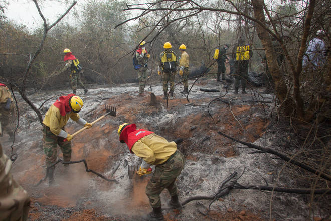 Local fire services are working tirelessly to try and control the fires and its damage