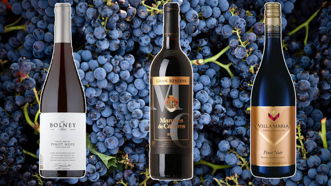 These fruity reds are all under £20