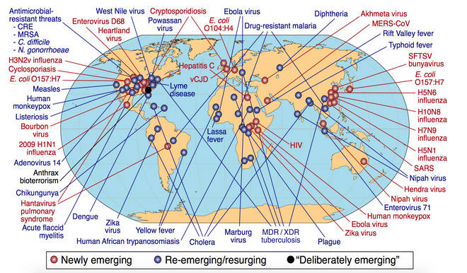 In the GPMB's report, they listed many of the world's emerging and re-emerging diseases, all which could cause an outbreak across the world