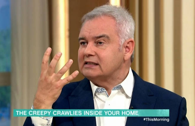 Eamonn Holmes claimed he'd seen a spider the size of his hand