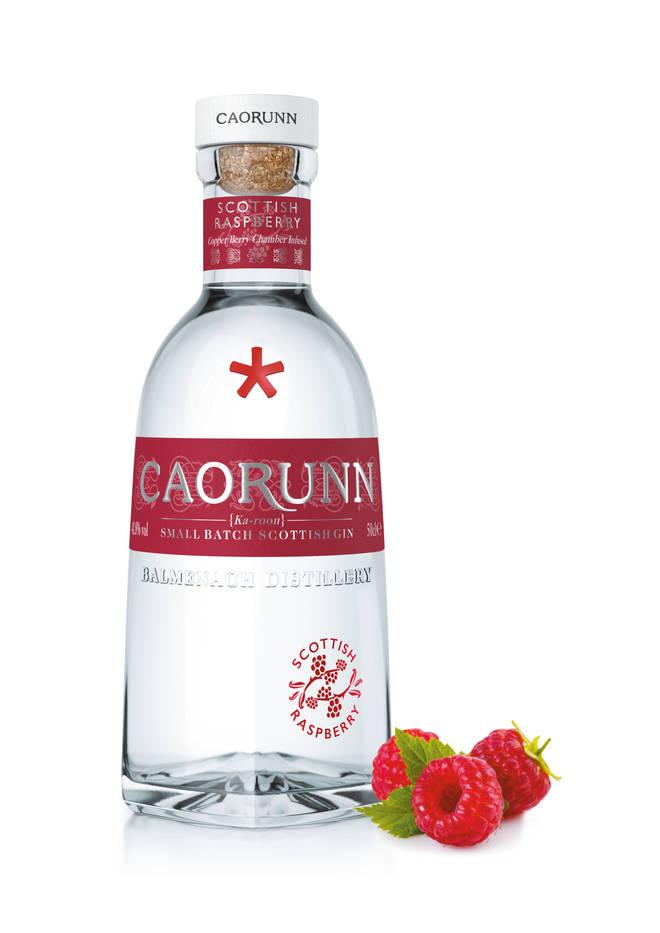 Raspberry gun by Caorunn
