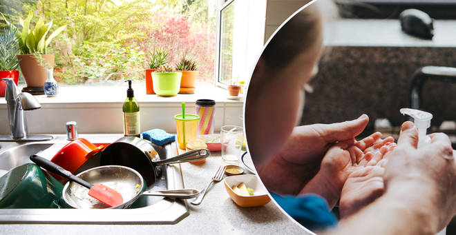 The most bacteria-ridden places in the home have been revealed (stock images)