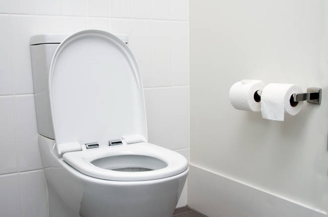 Surprisingly, the toilet seat was relatively low down the list (stock image)