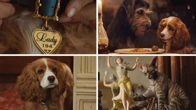 Lady and The Tramp, the remake, will be available from Disney+ next month