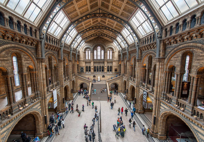 The Natural History Museum is a great place to go