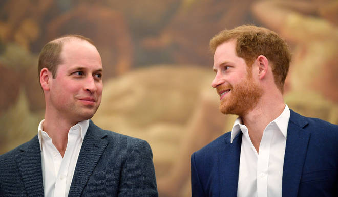 In the documentary, Prince Harry admitted to some sort of fallout with his brother