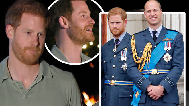 """Prince Harry and Prince William """"are still bonded through humour"""""""