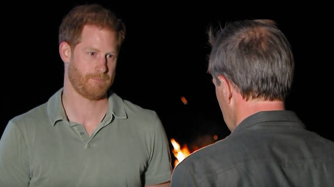 """Prince Harry honestly told the journalist that he and his brother were on """"different paths"""""""