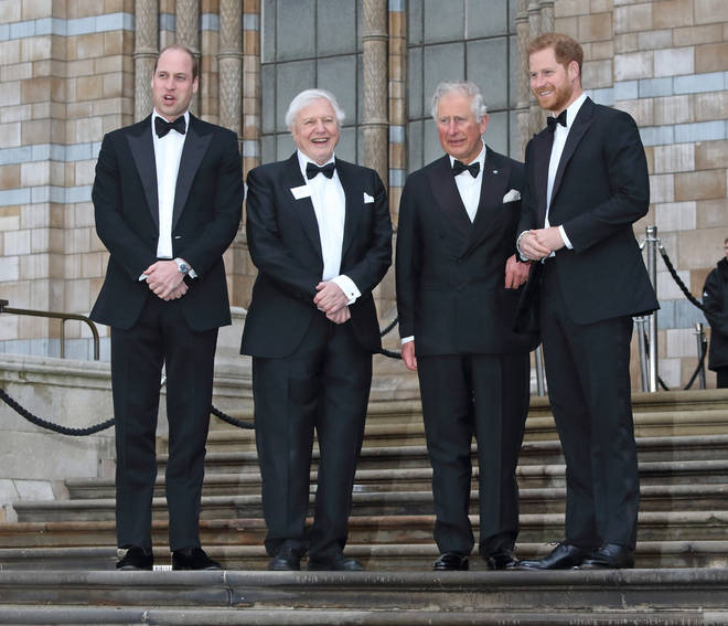 Prince Charles, Prince William and Prince Harry attended the premiere for Our Planet back in April