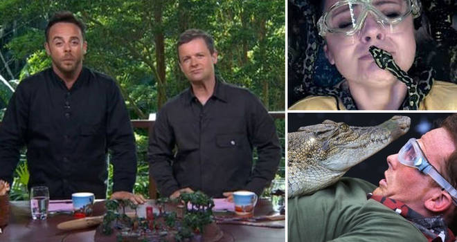 I'm A Celebrity has been slammed for it's treatment of animals