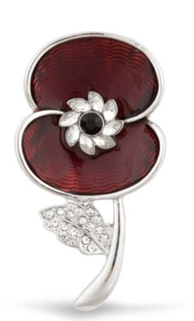 The stunning brooch is available for £29.99