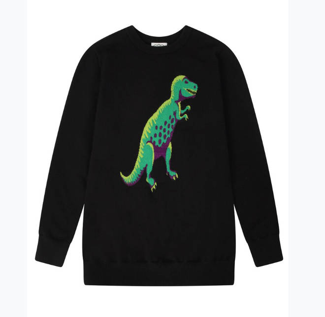 This adorable dinosaur jumper, for example, is now down to only £27.